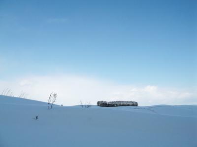 snowsho6.jpg