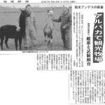 ●2007_11_07-北海道新聞(アルパカ試験飼育記事)